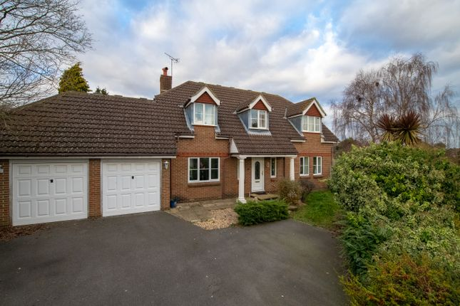 Thumbnail Detached house to rent in Maple Wood, Havant