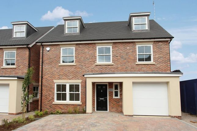Thumbnail Detached house for sale in Rosemary Gardens, Rugby