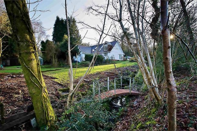 Thumbnail Detached house for sale in Rudry, Caerphilly