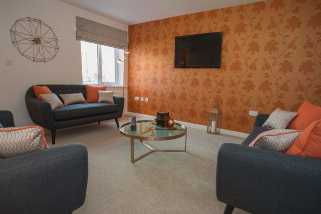 2 bedroom semi-detached house for sale in Springvale Terrace, Middlesbrough