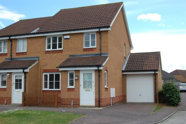 Thumbnail Semi-detached house to rent in Potter Way, Bedford