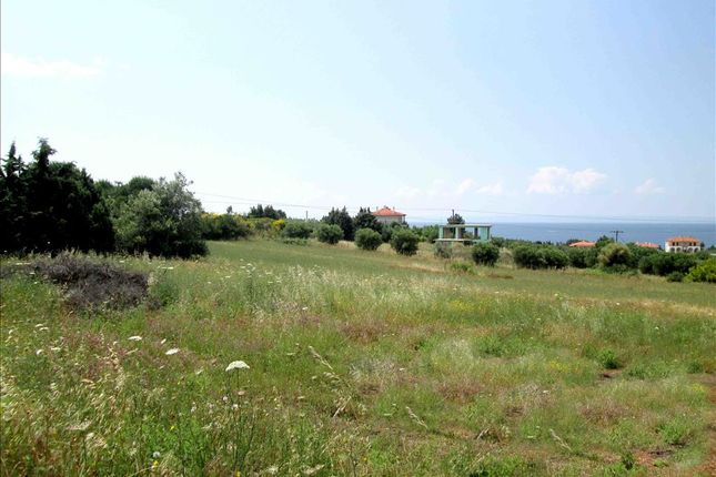 Thumbnail Land for sale in Nikitas, Chalkidiki, Gr