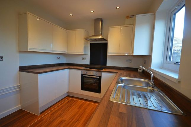 Thumbnail Detached bungalow to rent in Five Locks Close, Pontnewydd, Cwmbran