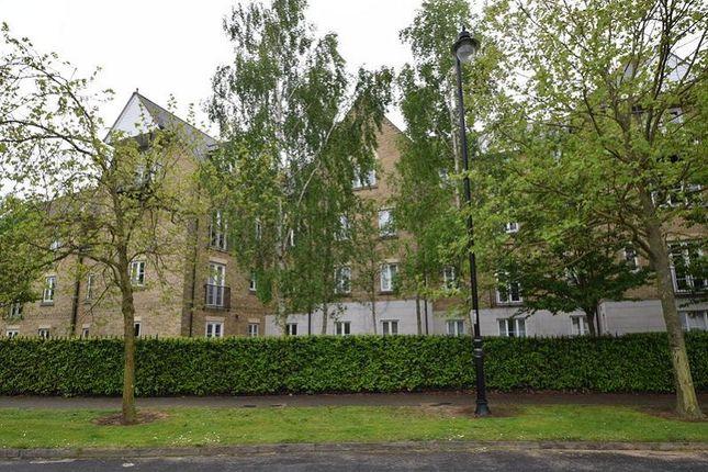 Thumbnail Flat to rent in Alnesbourn Crescent, Ipswich