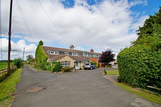 Thumbnail Terraced house for sale in Maureen Terrace, Belmont, Durham