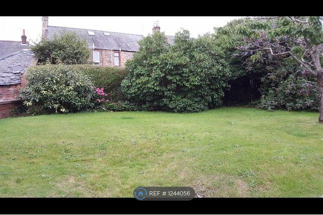 Thumbnail Maisonette to rent in Henry Street, Dumfries