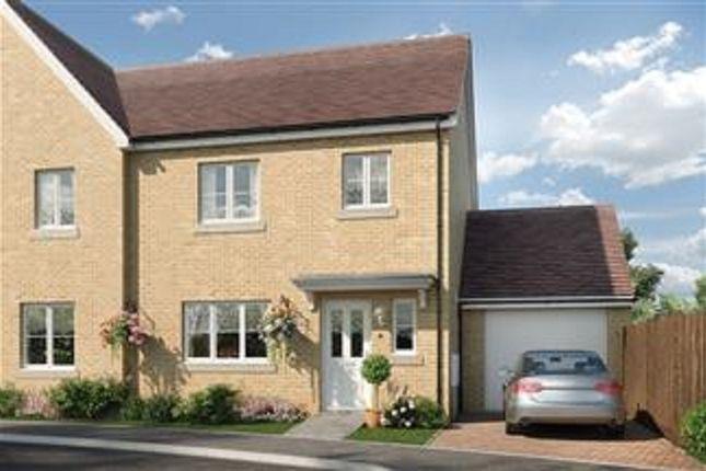 Thumbnail Semi-detached house for sale in Portland Way, Off Bramford Road, Great Blakenham, Suffolk