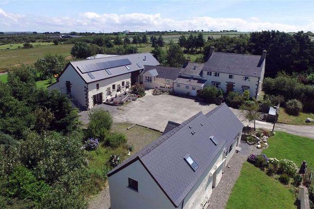Thumbnail Farm for sale in Felinwynt, Cardigan