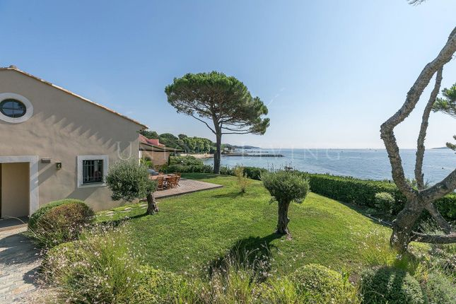 Thumbnail Town house for sale in Grimaud, 83310, France