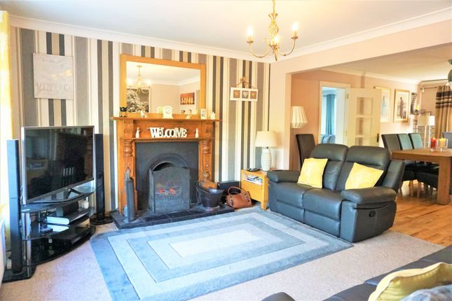 Thumbnail Detached house for sale in Fulmar Crescent, Lisburn