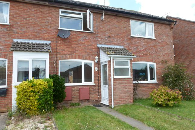 Thumbnail Property to rent in William Way, Dereham