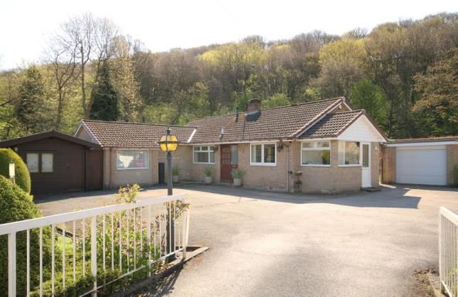 Thumbnail Bungalow for sale in Five Trees Avenue, Sheffield, South Yorkshire