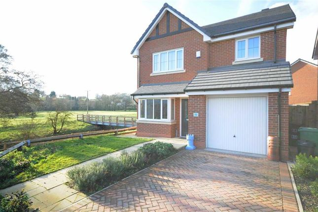 Thumbnail Detached house to rent in Meadowside, Trent Road, Stone