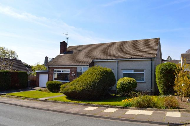 Thumbnail Detached bungalow to rent in South Rise, Cardiff