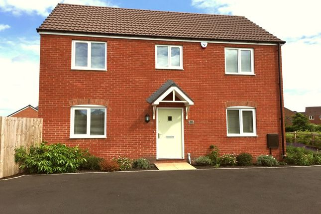Thumbnail Detached house to rent in Brambles Walk, Wellington, Telford