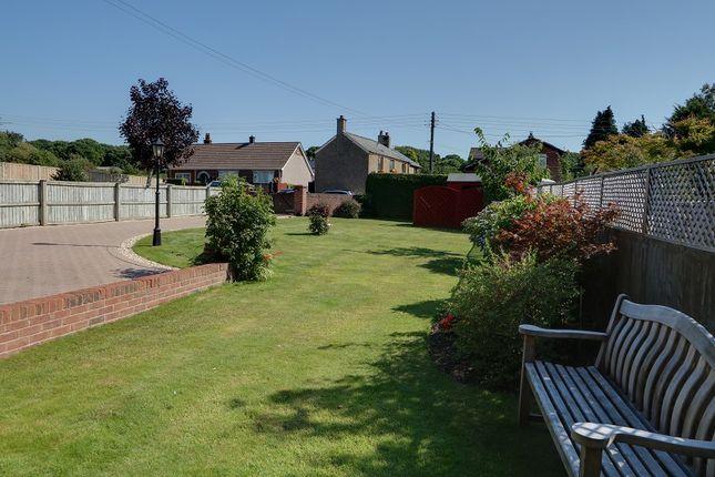 Garden of Oldcroft, Lydney, Gloucestershire. GL15