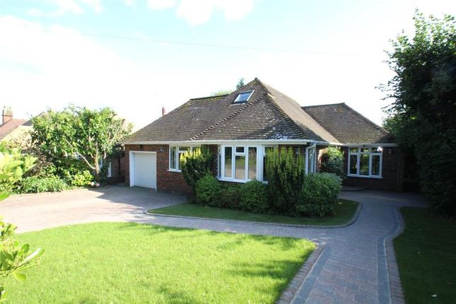 Thumbnail Detached bungalow for sale in School Hill, Findon Village, Worthing