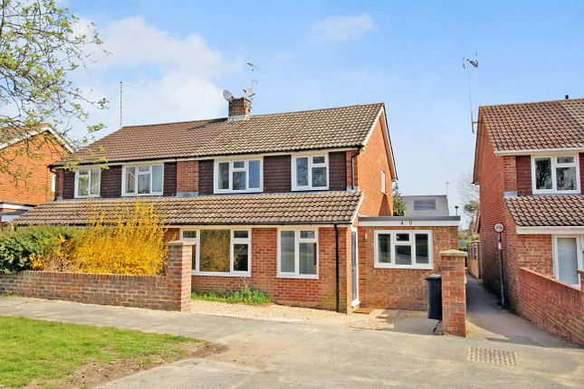 Thumbnail Semi-detached house to rent in Bolle Road, Alton