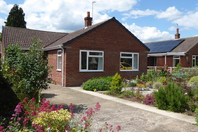 Thumbnail Detached bungalow for sale in Orchard Court, Romanby, Northallerton