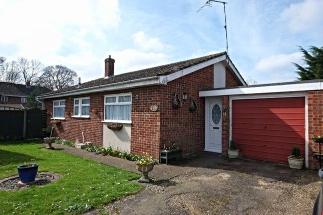 Thumbnail Detached bungalow for sale in Kings Road, Coltishall, Norwich