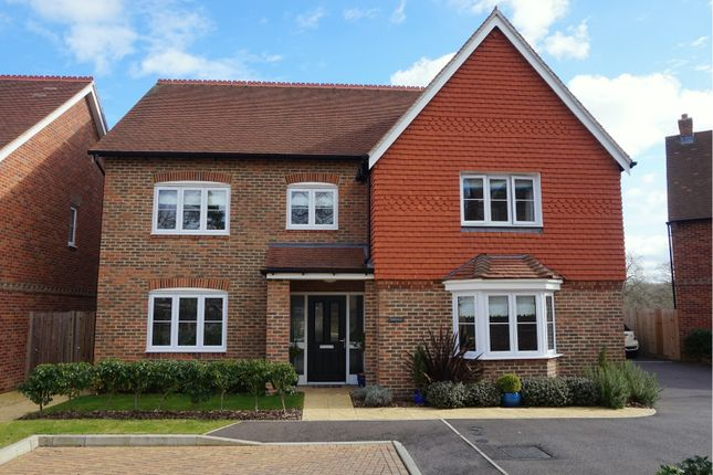 Thumbnail Detached house for sale in Haine Close, Horley