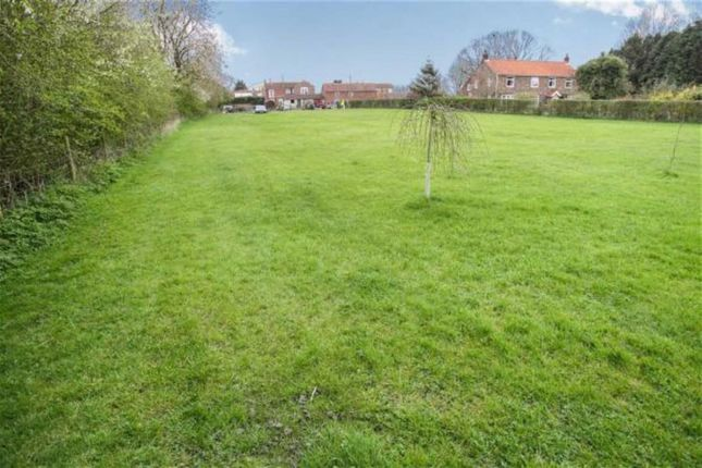 Thumbnail Detached house for sale in Pratts Lane, Withernwick, East Yorkshire
