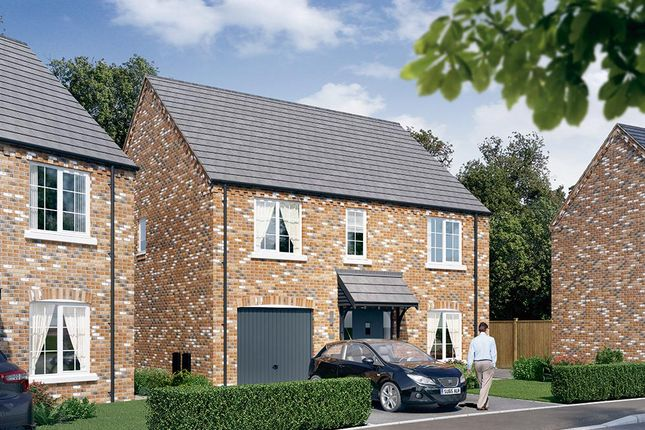 "Thumbnail Detached house for sale in ""The Rosebury"" at Dark Lane, Whatton, Nottingham"