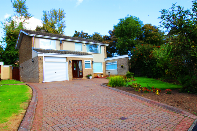 Thumbnail Detached house for sale in Lorimers Close, Easington, Durham