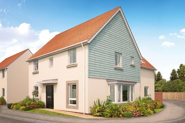 Thumbnail Detached house for sale in Camomile Lawn, Weston Lane, Totnes, Devon