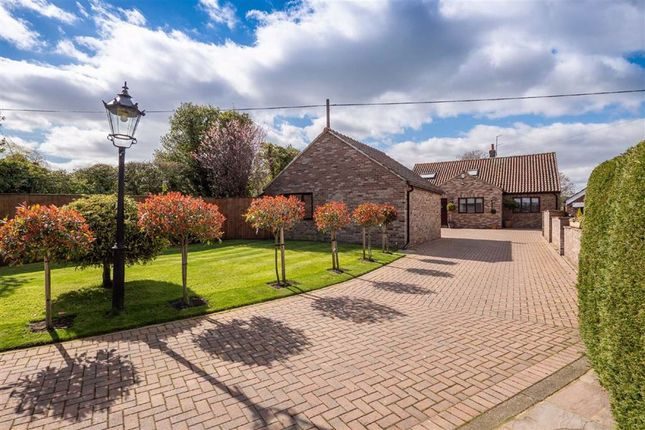 Thumbnail Detached bungalow for sale in Hollins Lane, Harrogate, North Yorkshire