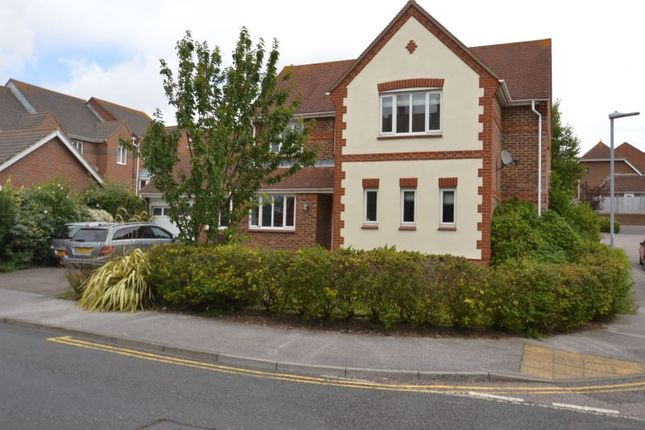 Thumbnail Detached house to rent in Selwyn Road, Eastbourne