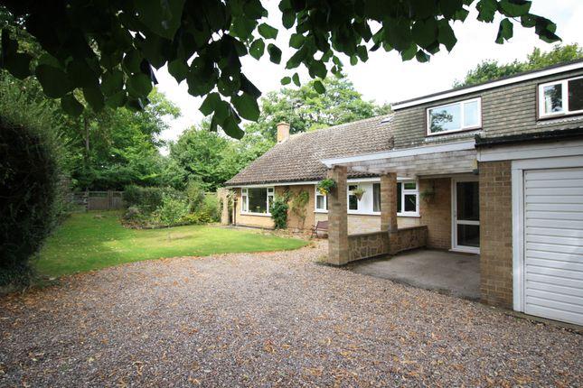 5 bed detached bungalow for sale in Hawthorne Avenue, Borrowash, Derby