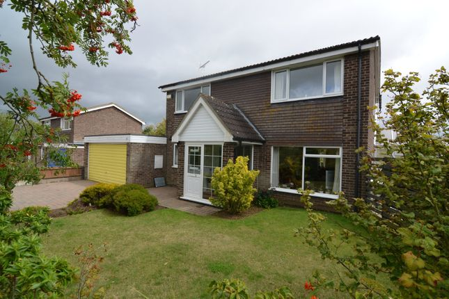 4 bed detached house for sale in Walnut Close, Felixstowe