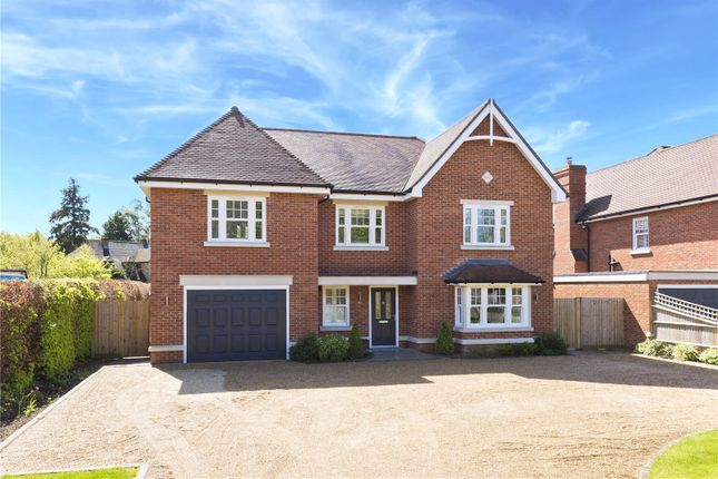 Thumbnail Detached house to rent in Lime Grove, West Clandon, Guildford, Surrey