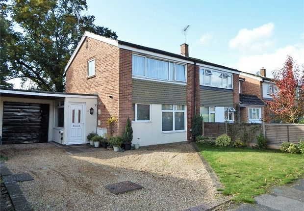 Thumbnail Semi-detached house for sale in Romayne Close, Farnborough, Hampshire