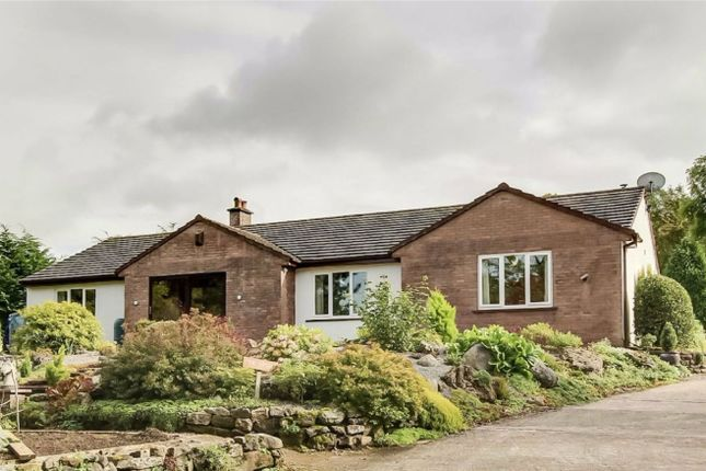 Thumbnail Detached bungalow for sale in The Ghyll, Threapland, Aspatria, Cumbria