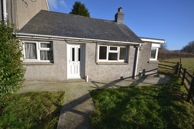 Thumbnail Semi-detached bungalow to rent in Drefach, Llanybydder