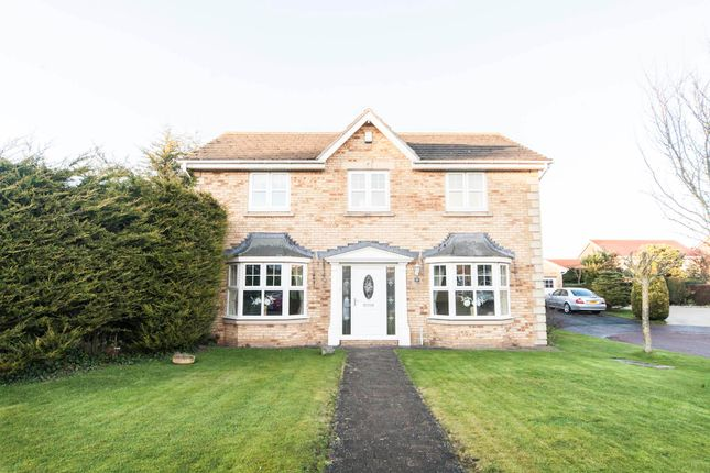 Thumbnail Detached house for sale in Nightingale Close, Hartlepool