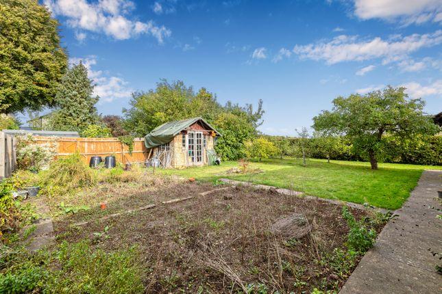 Gardens of Alwyne Road, Cambridge CB1