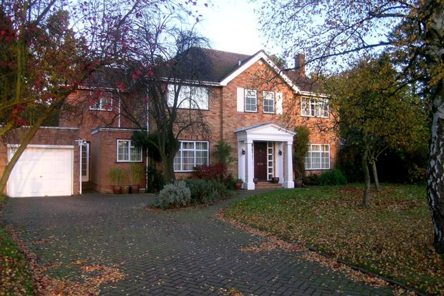 Thumbnail Property to rent in Amberley Close, Send, Woking
