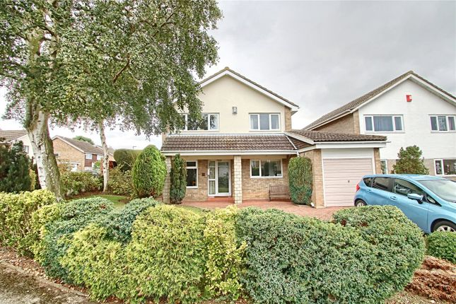 Thumbnail Detached house for sale in The Slayde, Yarm