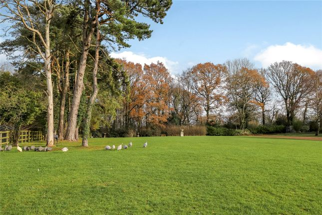 Picture No. 22 of Swelling Hill, Ropley, Alresford, Hampshire SO24