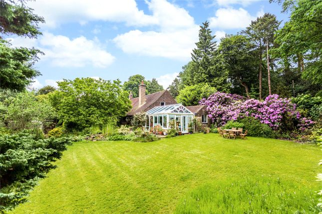 Thumbnail Detached house for sale in Smugglers Lane, Crowborough, East Sussex