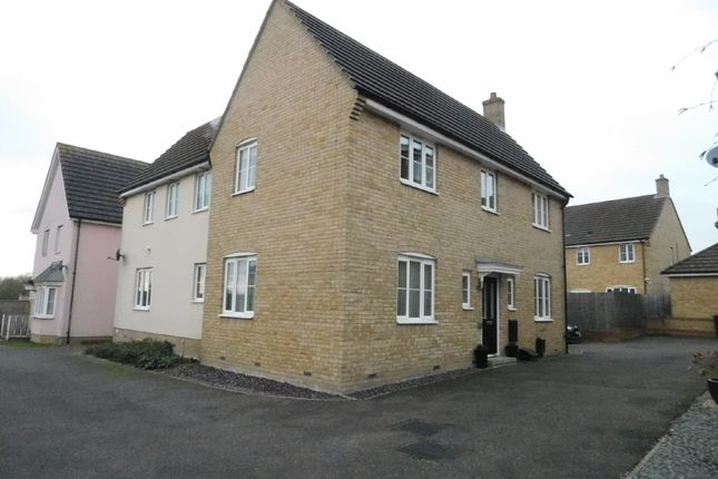 Thumbnail Detached house for sale in Dotterel Way, Stowmarket