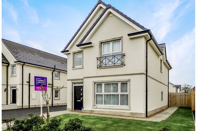 Thumbnail Detached house for sale in Rocklyn Walk, Donaghadee