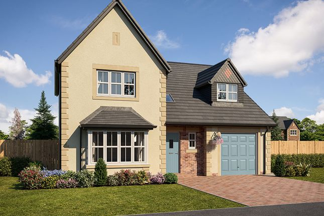 "Thumbnail Detached house for sale in ""Taunton"" at Low Lane, Acklam, Middlesbrough"