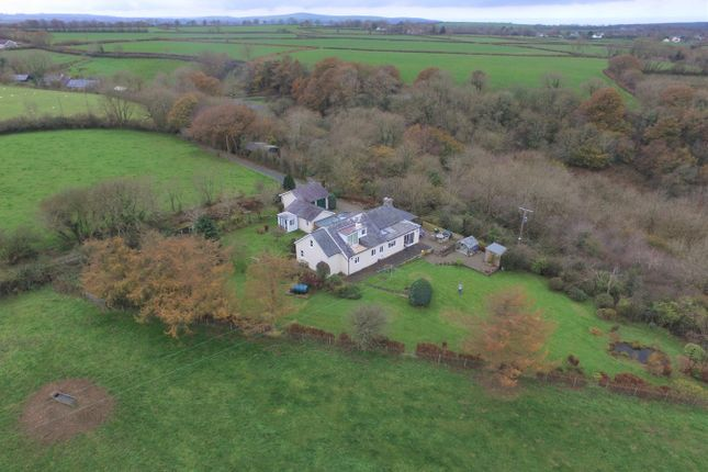 Thumbnail Country house for sale in Cross Inn, New Quay