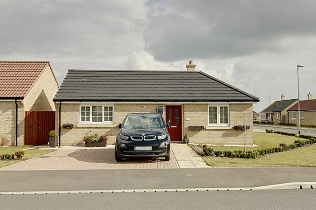 Thumbnail Detached bungalow for sale in Chesham Drive, Baston, Peterborough