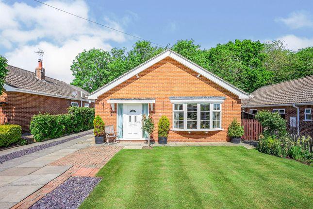 Thumbnail Detached bungalow for sale in Park Road, Allington, Grantham