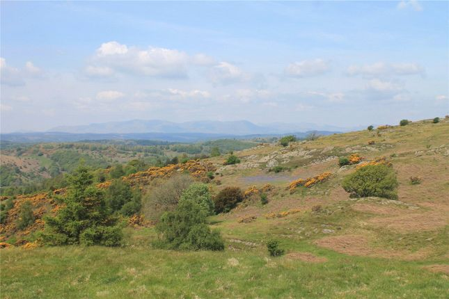 Thumbnail Land for sale in Lords Lot - Lot 1, Crosthwaite, Kendal, Cumbria